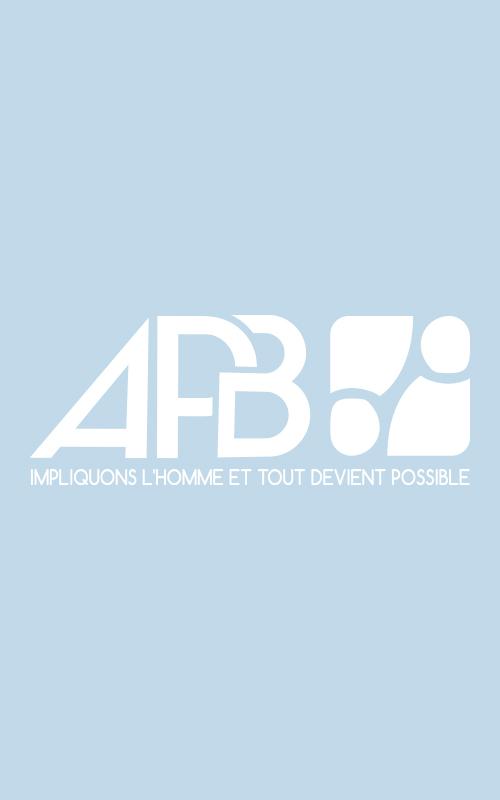 Création d'un logo pour APB